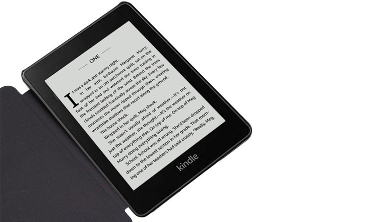 NFcase Divisi для Amazon Kindle Paperwhite 2018 10th Generation Turquoise