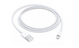 Apple Lightning to USB (original, MD818ZM/A)