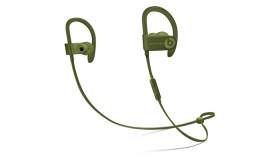 Наушники Beats by Dr. Dre Powerbeats3 Wireless Turf Green (MQ382LL/A)